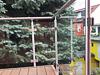 Edelstahlgeländer mit Glasfüllung - Ansicht 2 - Scheiben aus VSG 10,76 klar